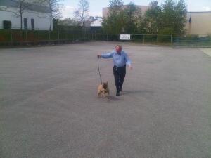 Fred and Laila take a run