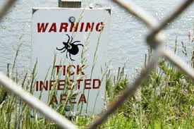 warning ticks