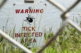 warning ticks