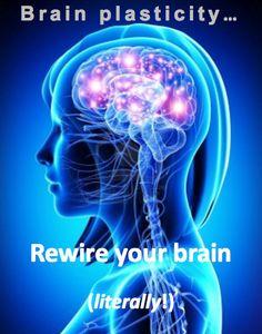 brain-ewired